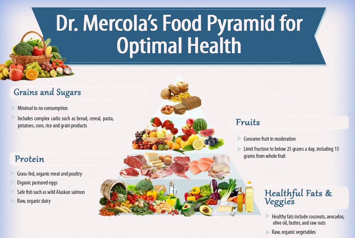 Following USDA Diet Advice is a Recipe for Obesity by Dr Mercola – THE HOLISTIC WORKS