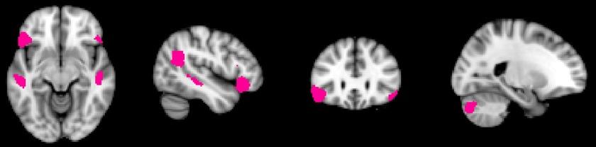 Neuro 3 Language