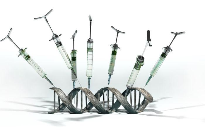 gmo syringes