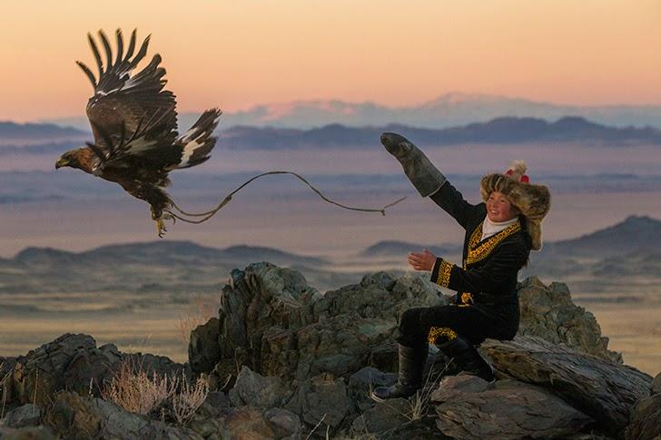 golden eagle 4