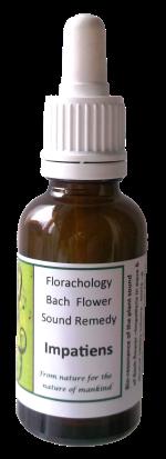 Bach-flower-Impatiens