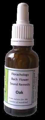 Bach-flower-Oak