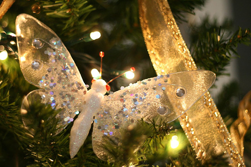 Christmas Butterfly by Donna France