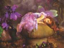 faery asleep