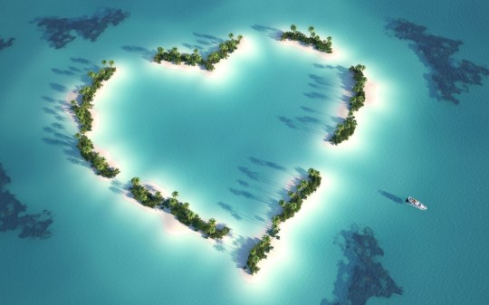 hearts-shape-tree-between-sea-pics