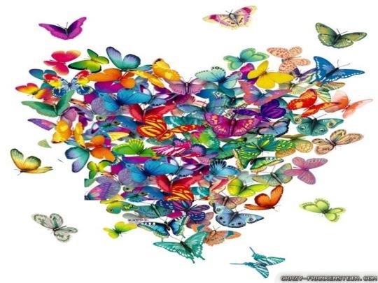 love-butterflies-wallpapers-1024x768