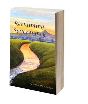 reclaiming-sovereignty-3d-cover-brightened